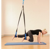 SISSEL Professional Suspension Trainer